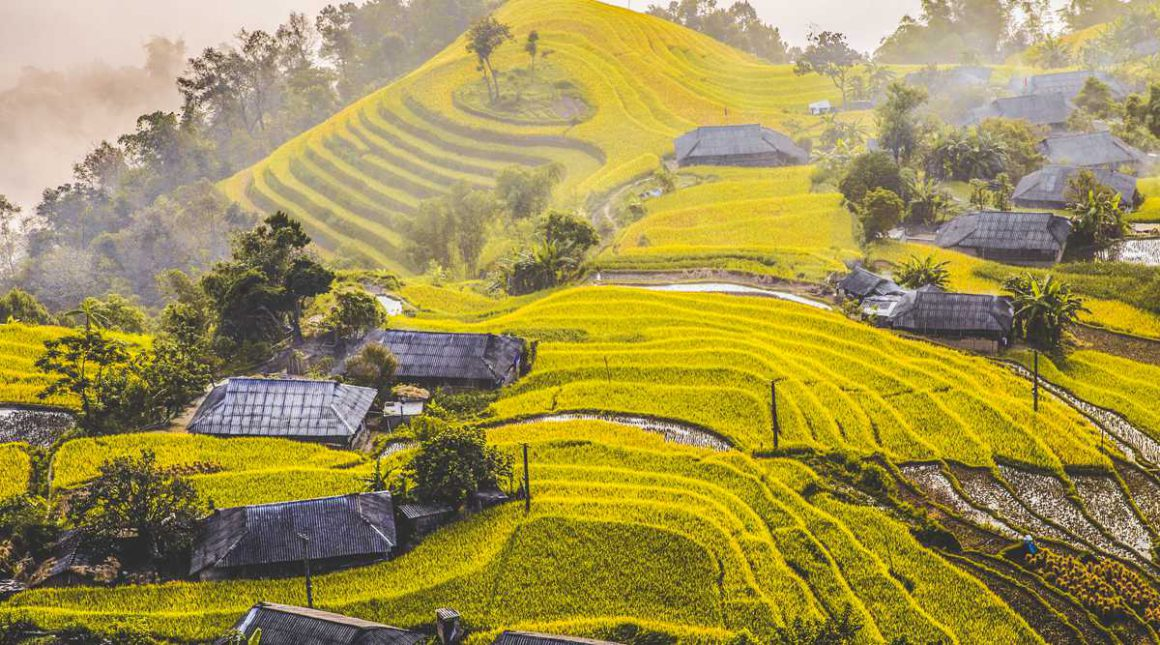 Explore The North Of Vietnam In 12 Days Package
