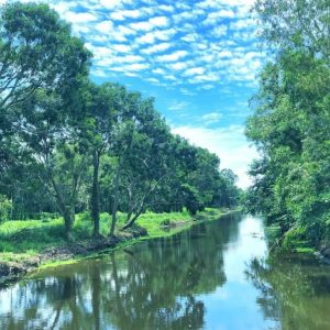 Hau Giang, the charm of river country